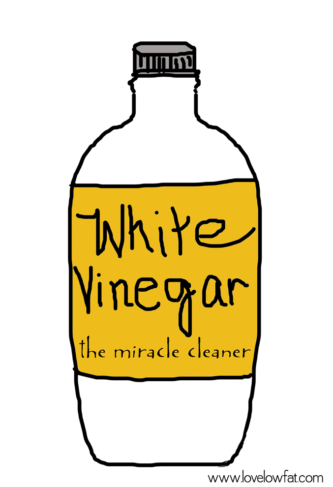best-milk-frother-lovelowfat-white-vinegar